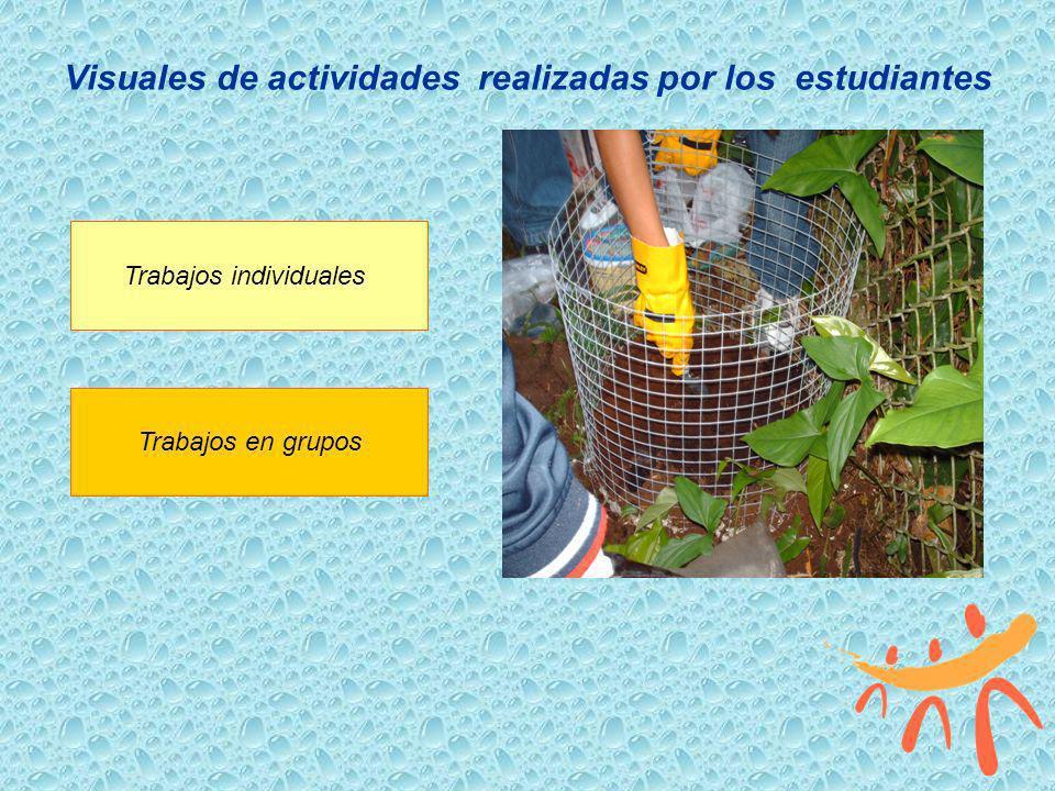 Visuales de actividades realizadas por los estudiantes