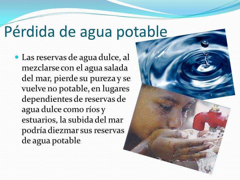 Pérdida de agua potable