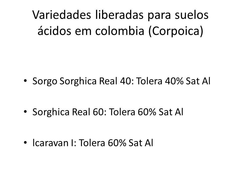 Variedades liberadas para suelos ácidos em colombia (Corpoica)