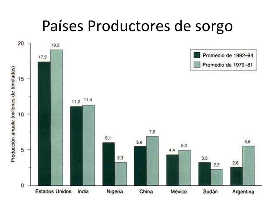 Países Productores de sorgo
