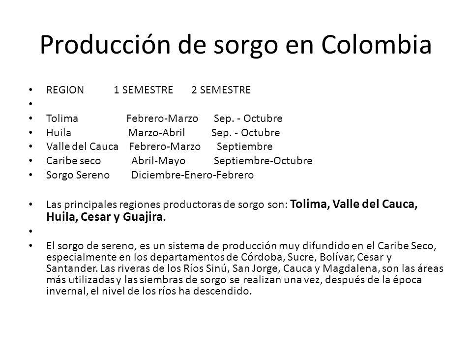 Producción de sorgo en Colombia