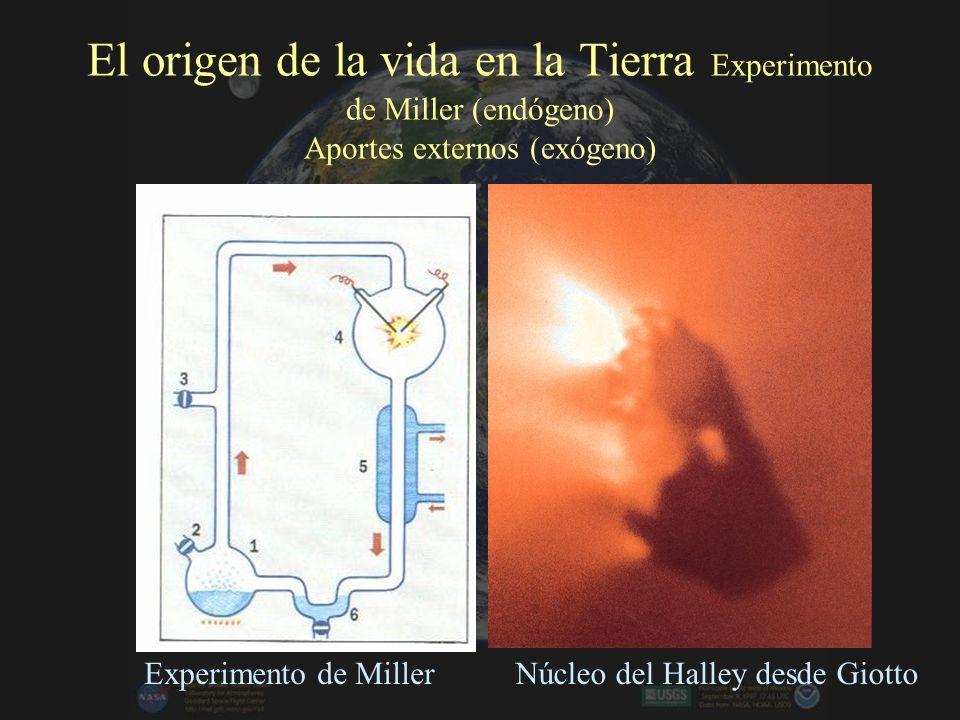 El origen de la vida en la Tierra Experimento de Miller (endógeno) Aportes externos (exógeno)