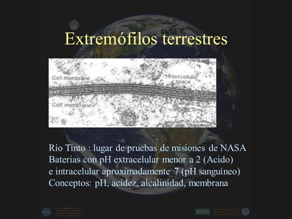 Extremófilos terrestres