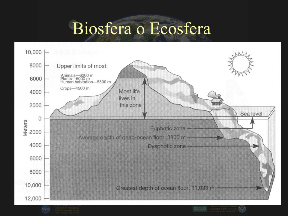 Biosfera o Ecosfera