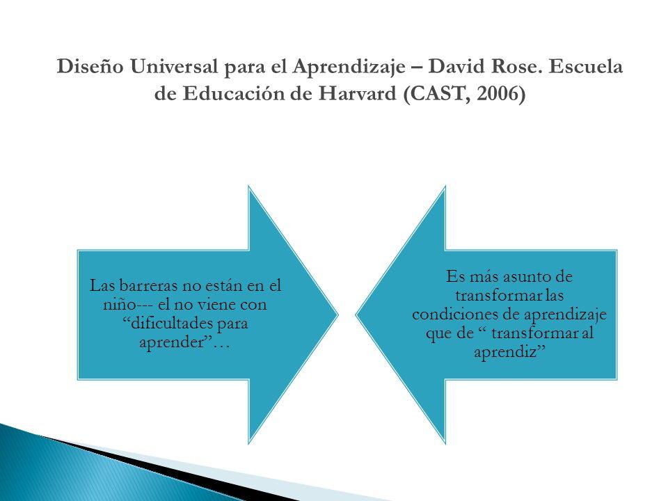 Diseño Universal para el Aprendizaje – David Rose
