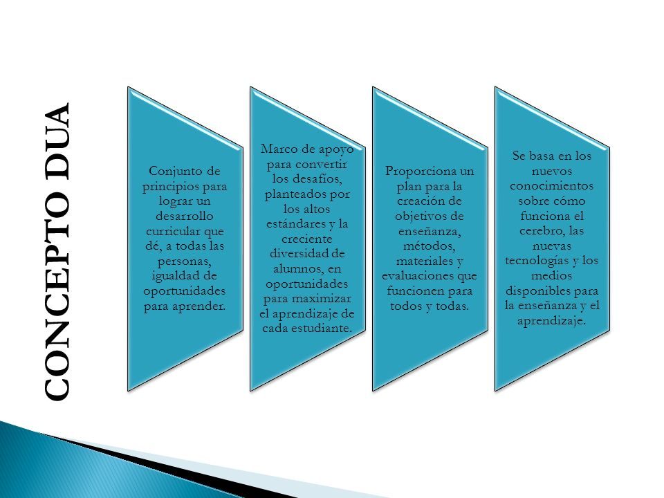 CONCEPTO DUA Conjunto de principios para lograr un desarrollo curricular que dé, a todas las personas, igualdad de oportunidades para aprender.