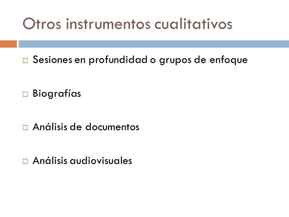 Otros instrumentos cualitativos