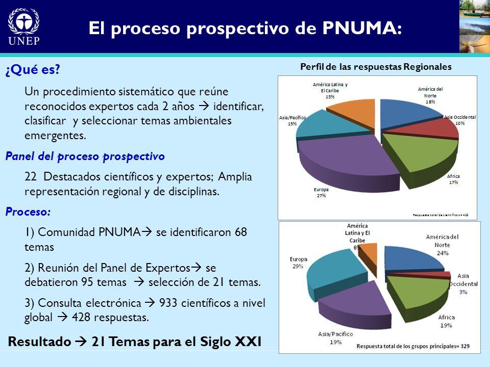 El proceso prospectivo de PNUMA: