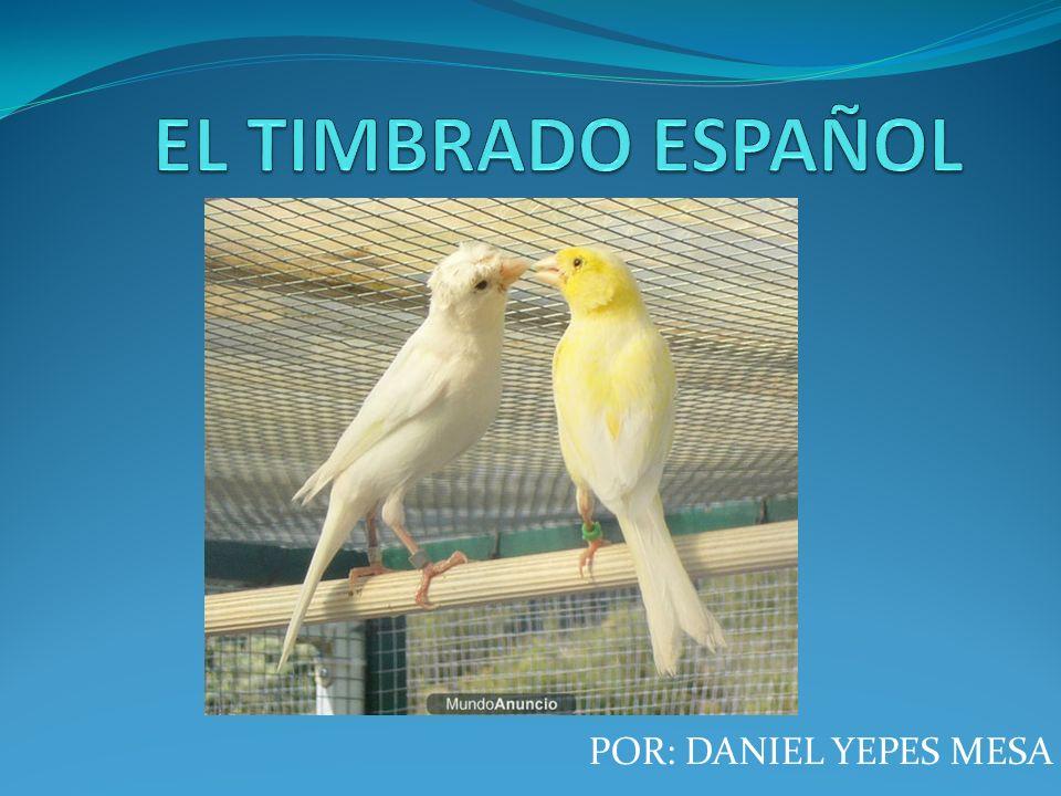 EL TIMBRADO ESPAÑOL POR: DANIEL YEPES MESA