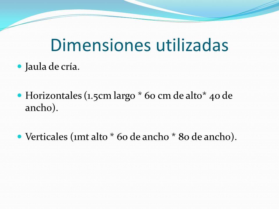 Dimensiones utilizadas