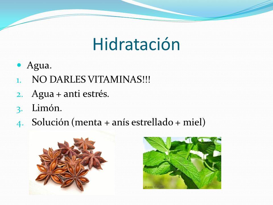 Hidratación Agua. NO DARLES VITAMINAS!!! Agua + anti estrés. Limón.