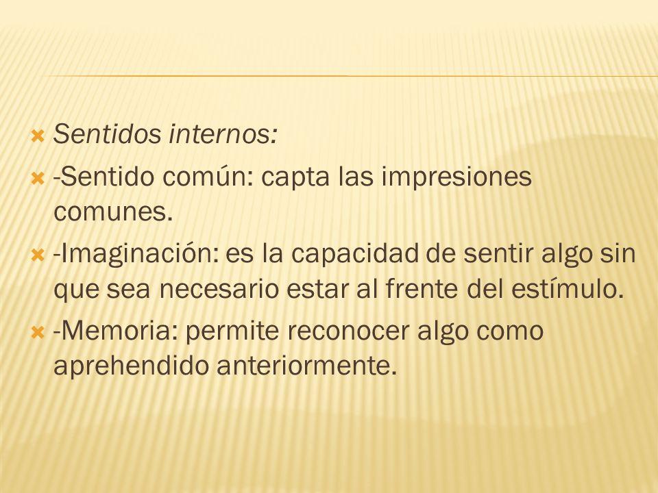 Sentidos internos: -Sentido común: capta las impresiones comunes.