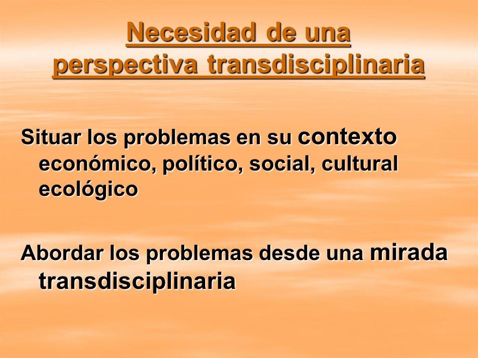 Necesidad de una perspectiva transdisciplinaria