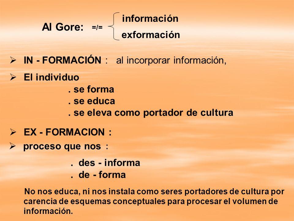 Al Gore: IN - FORMACIÓN : al incorporar información, El individuo