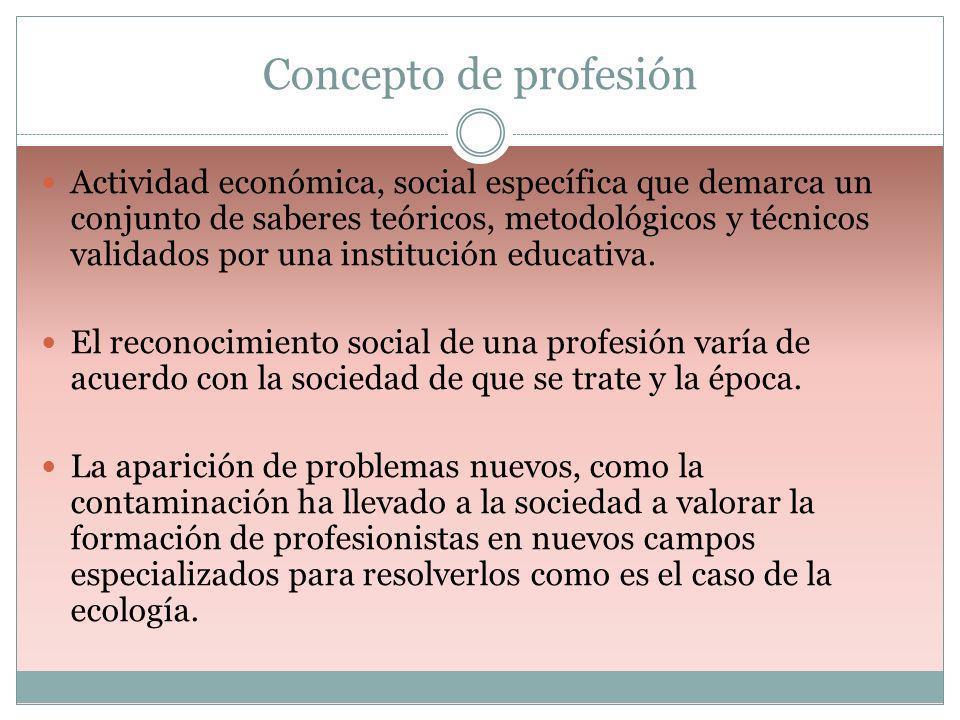 Concepto de profesión