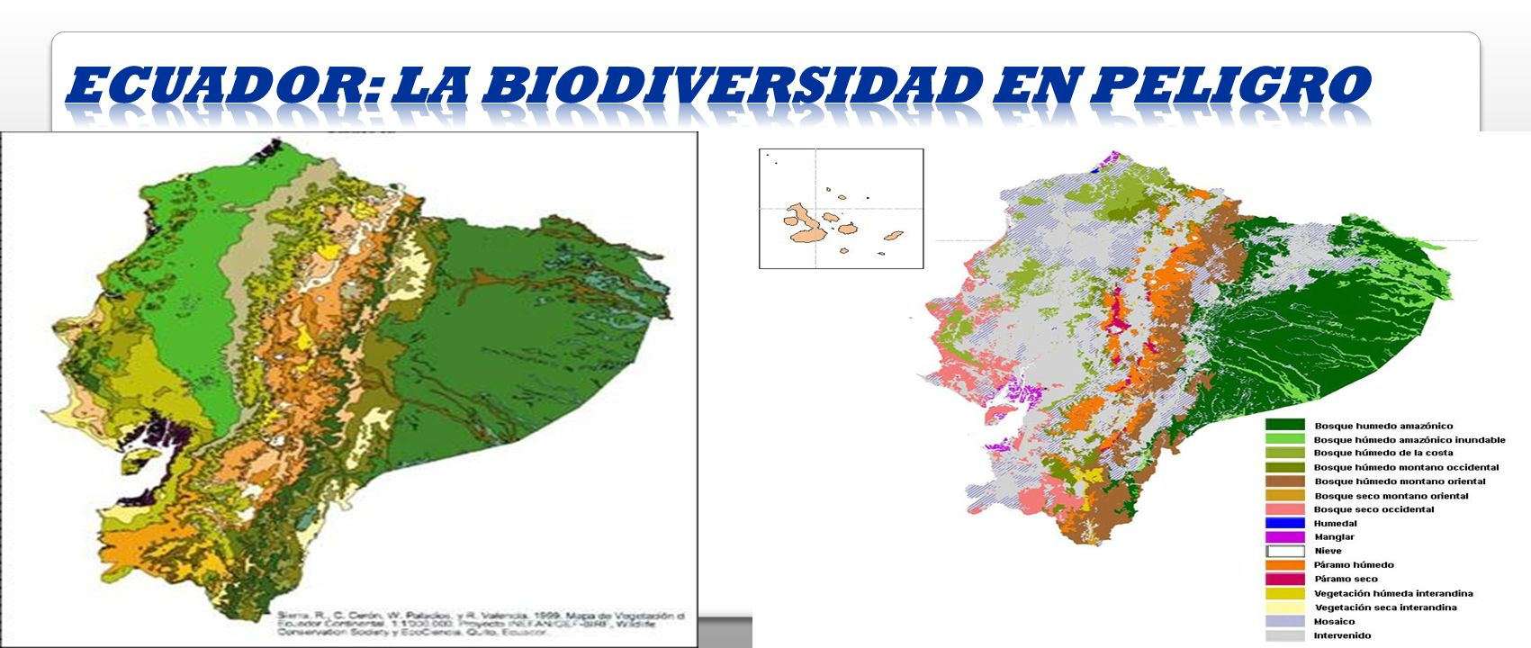 Ecuador: La biodiversidad en peligro