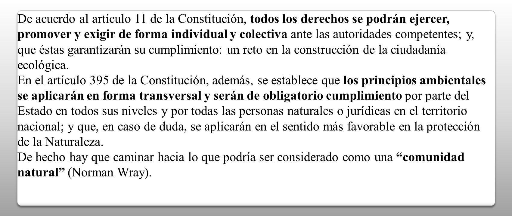 De acuerdo al artículo 11 de la Constitución, todos los derechos se podrán ejercer, promover y exigir de forma individual y colectiva ante las autoridades competentes; y, que éstas garantizarán su cumplimiento: un reto en la construcción de la ciudadanía ecológica.