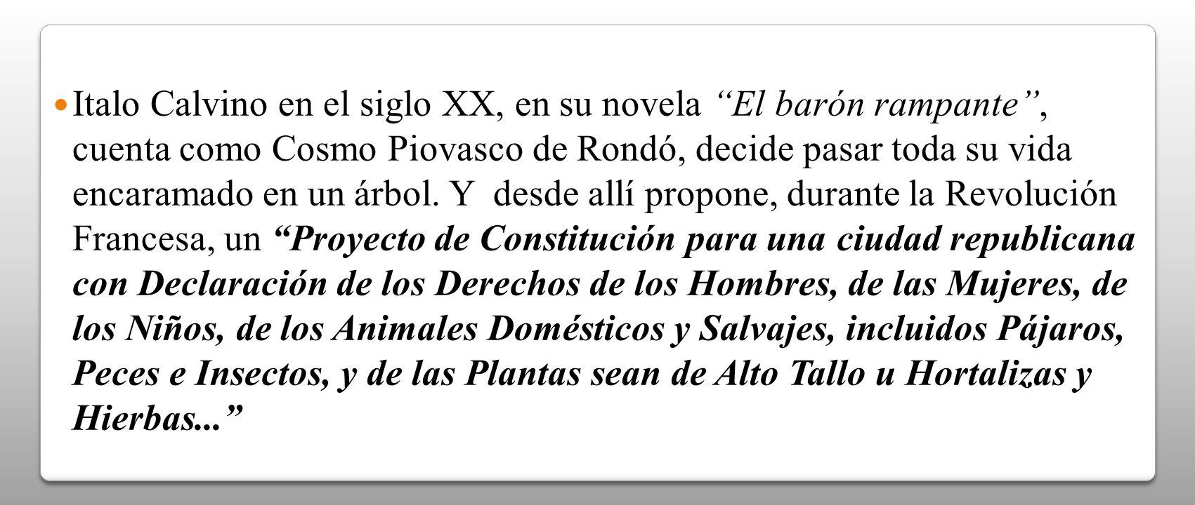Italo Calvino en el siglo XX, en su novela El barón rampante , cuenta como Cosmo Piovasco de Rondó, decide pasar toda su vida encaramado en un árbol.