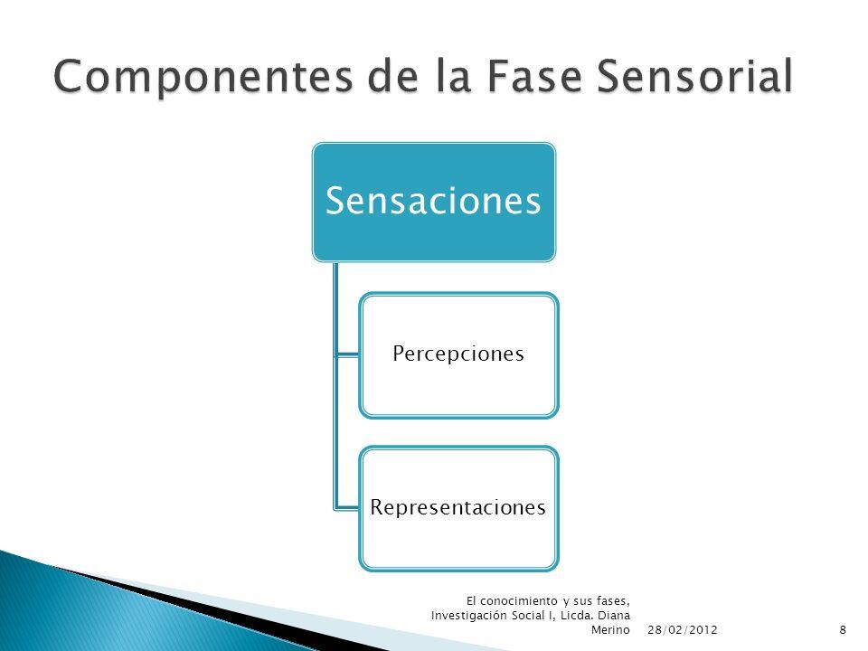Componentes de la Fase Sensorial