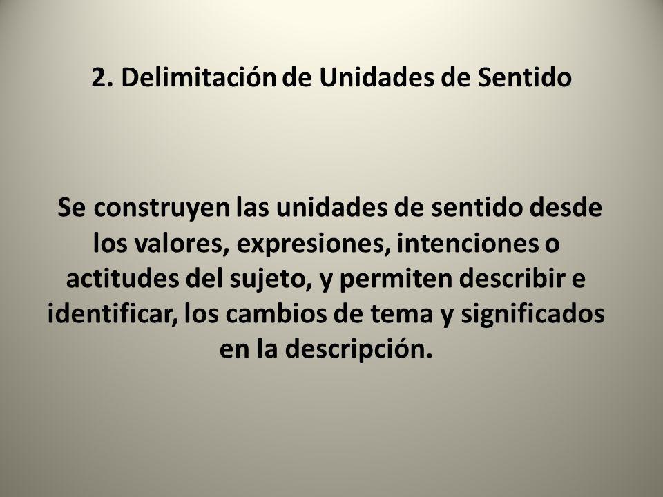 2. Delimitación de Unidades de Sentido