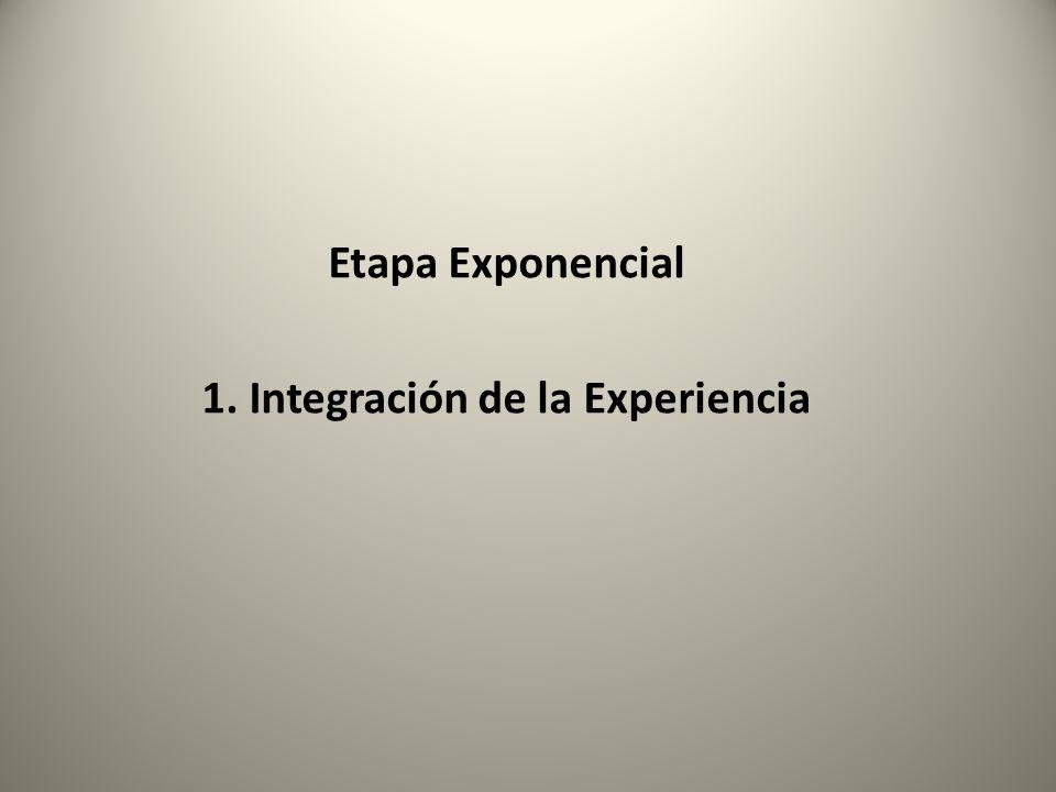 1. Integración de la Experiencia