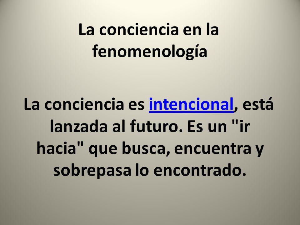 La conciencia en la fenomenología