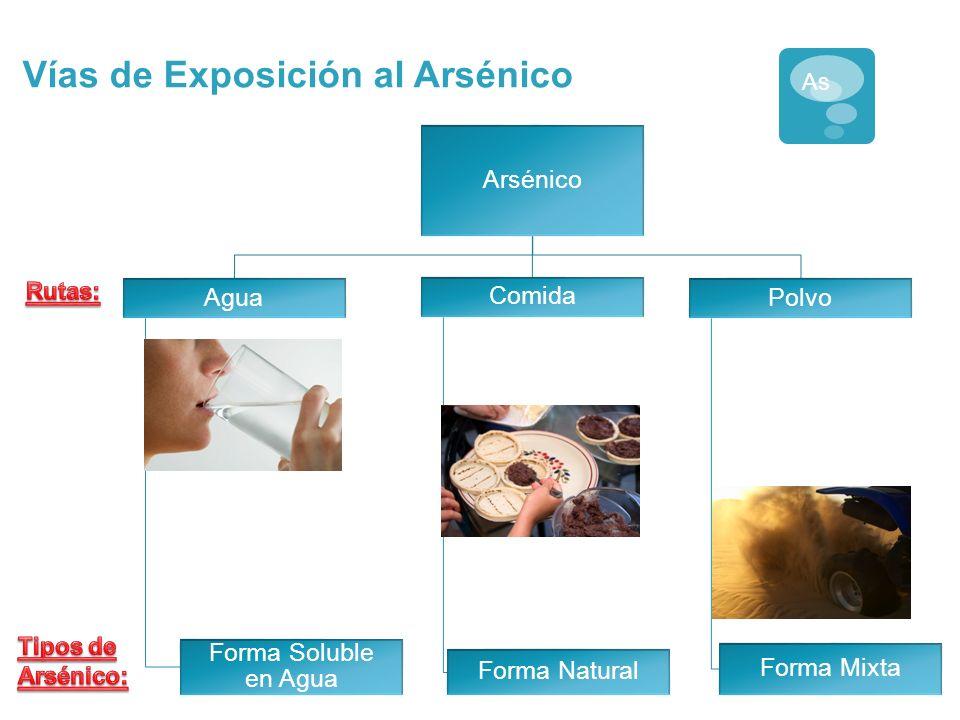Vías de Exposición al Arsénico