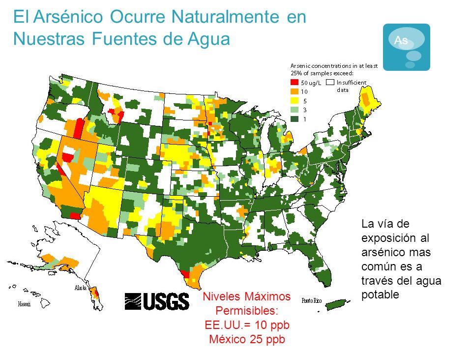 El Arsénico Ocurre Naturalmente en Nuestras Fuentes de Agua