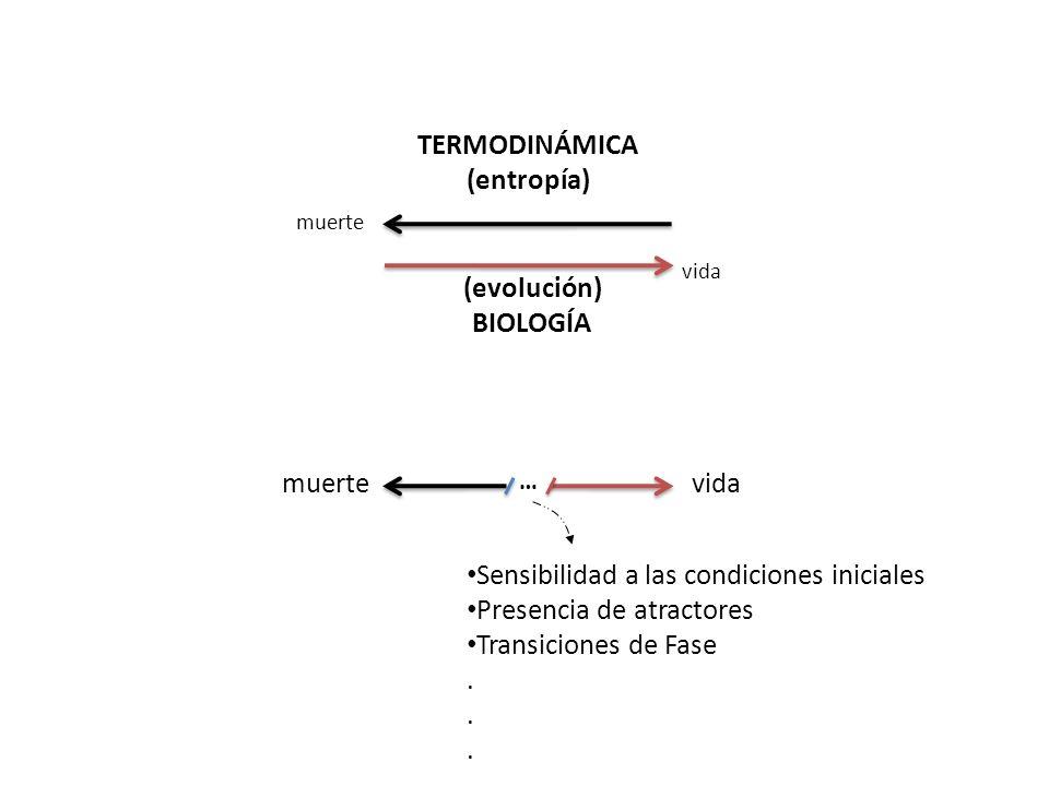 TERMODINÁMICA (entropía) (evolución) BIOLOGÍA