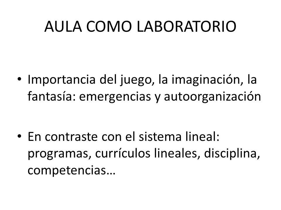 AULA COMO LABORATORIO Importancia del juego, la imaginación, la fantasía: emergencias y autoorganización.