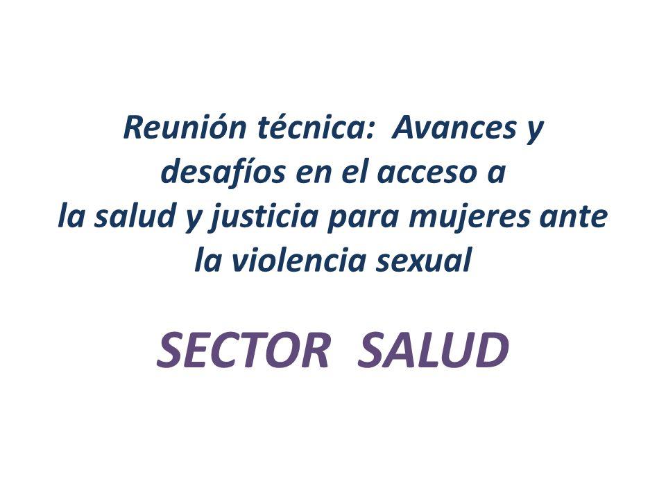 Reunión técnica: Avances y desafíos en el acceso a la salud y justicia para mujeres ante la violencia sexual