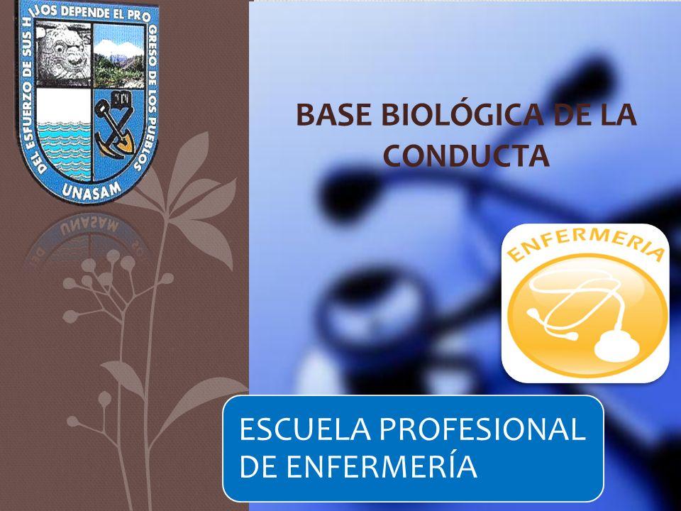 BASE BIOLÓGICA DE LA CONDUCTA