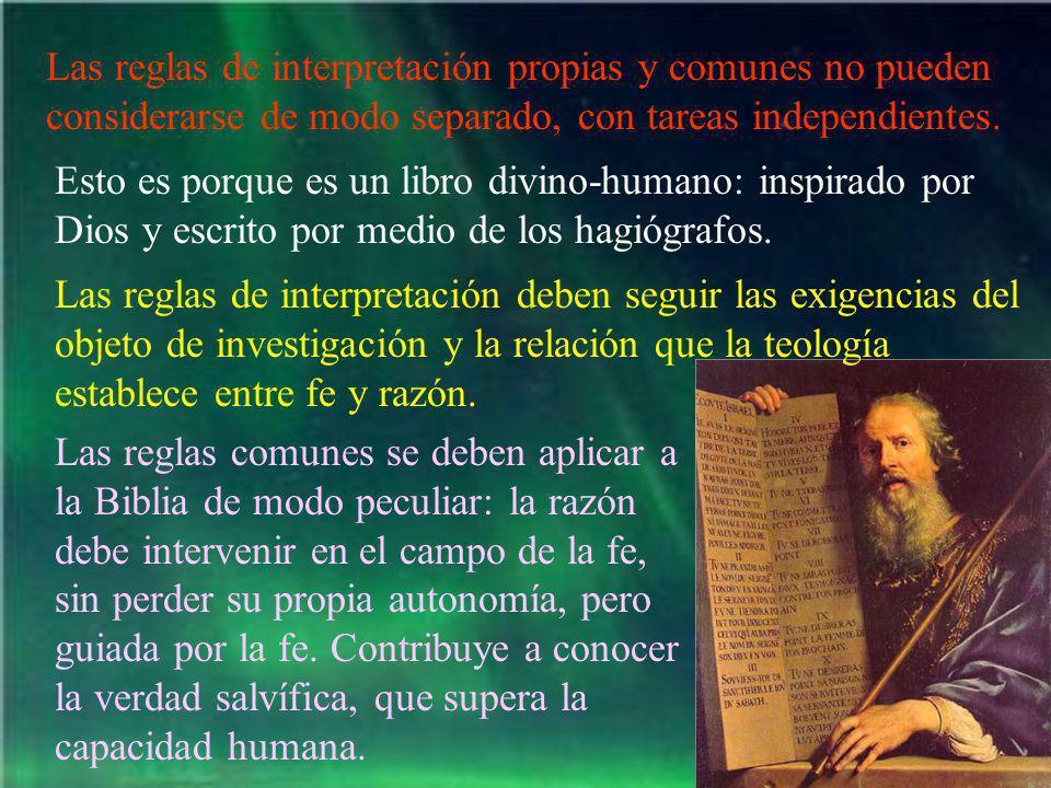 Las reglas de interpretación propias y comunes no pueden considerarse de modo separado, con tareas independientes.