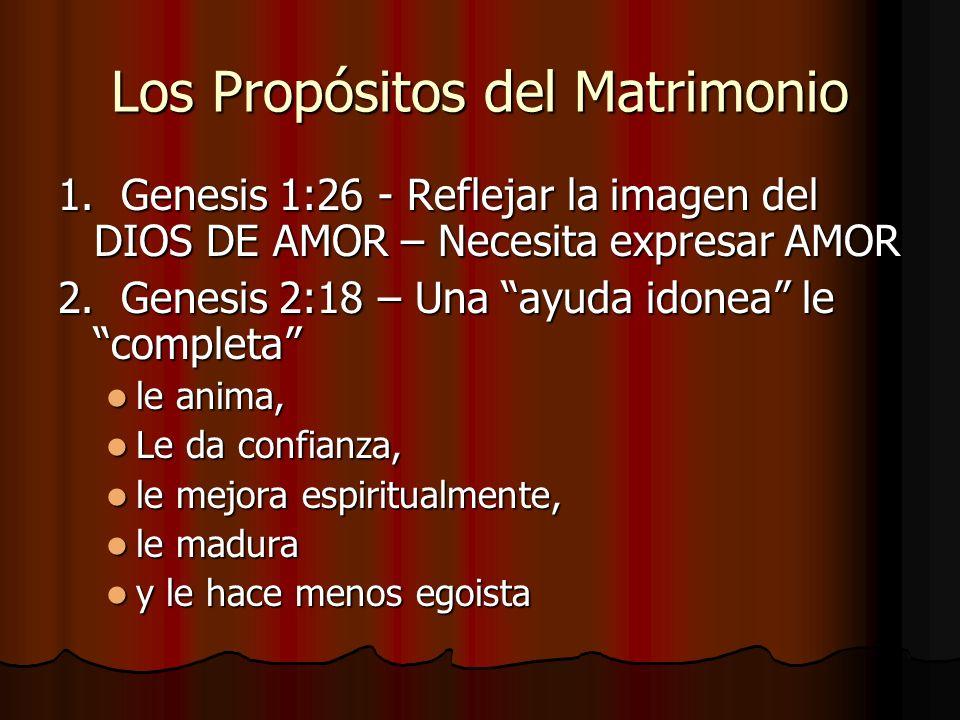 Los Propósitos del Matrimonio