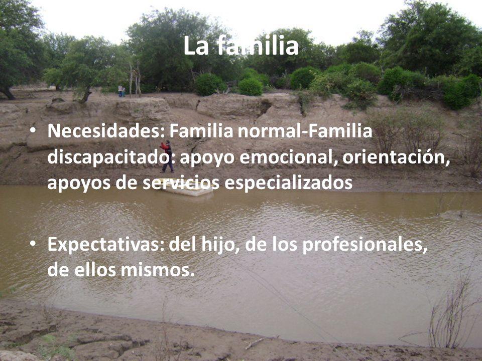 La familia Necesidades: Familia normal-Familia discapacitado: apoyo emocional, orientación, apoyos de servicios especializados.