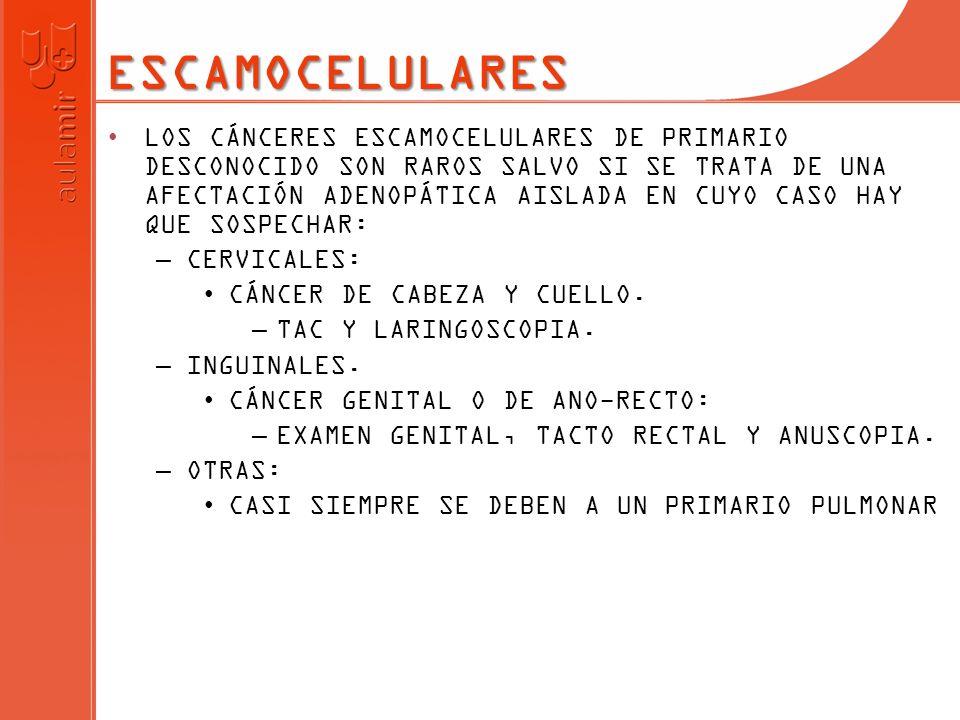 ESCAMOCELULARES