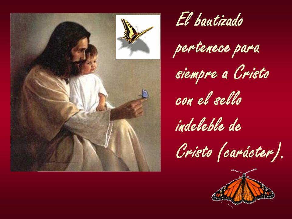 El bautizado pertenece para siempre a Cristo con el sello indeleble de Cristo (carácter).
