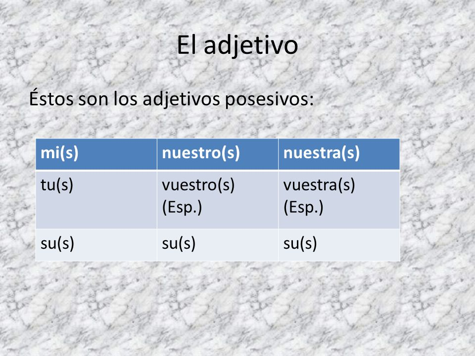 El adjetivo Éstos son los adjetivos posesivos: mi(s) nuestro(s)