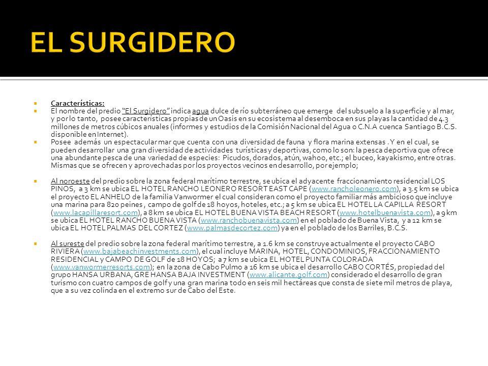 EL SURGIDERO Características: