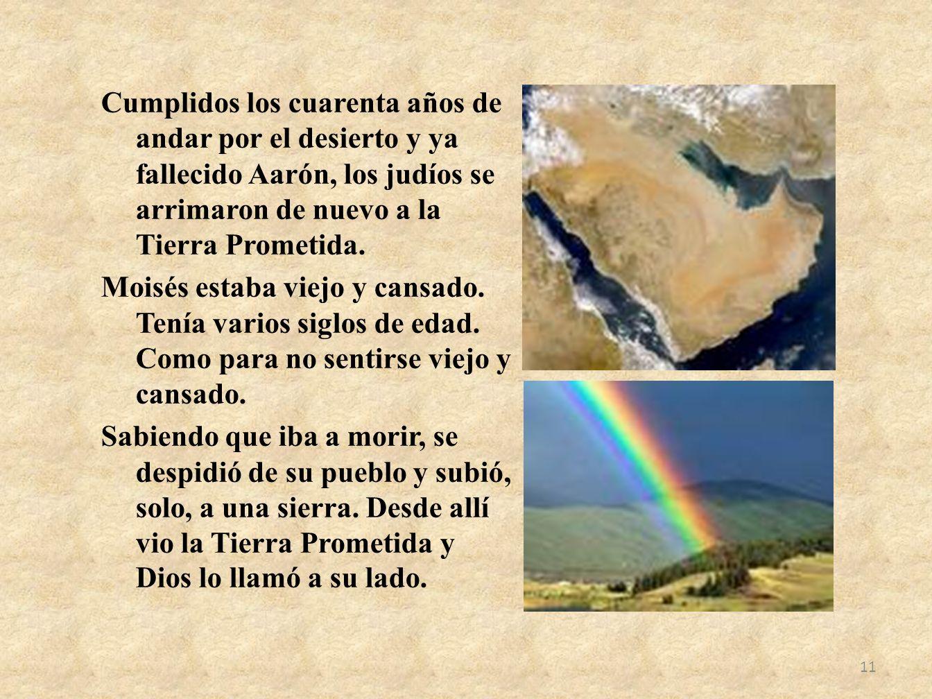 Cumplidos los cuarenta años de andar por el desierto y ya fallecido Aarón, los judíos se arrimaron de nuevo a la Tierra Prometida.