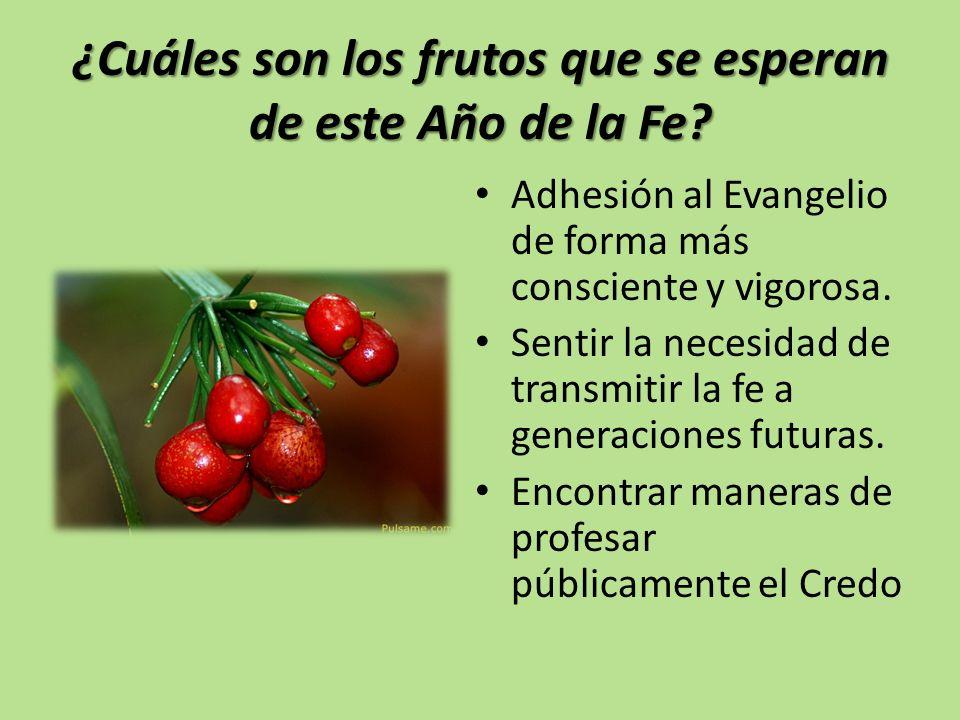 ¿Cuáles son los frutos que se esperan de este Año de la Fe