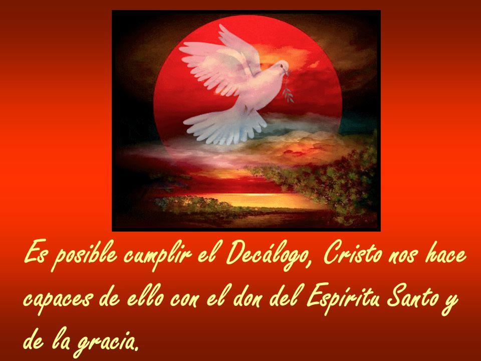 Es posible cumplir el Decálogo, Cristo nos hace