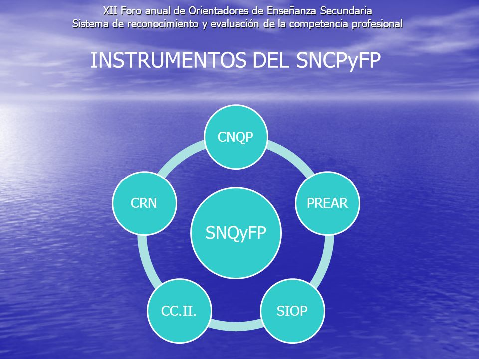 INSTRUMENTOS DEL SNCPyFP