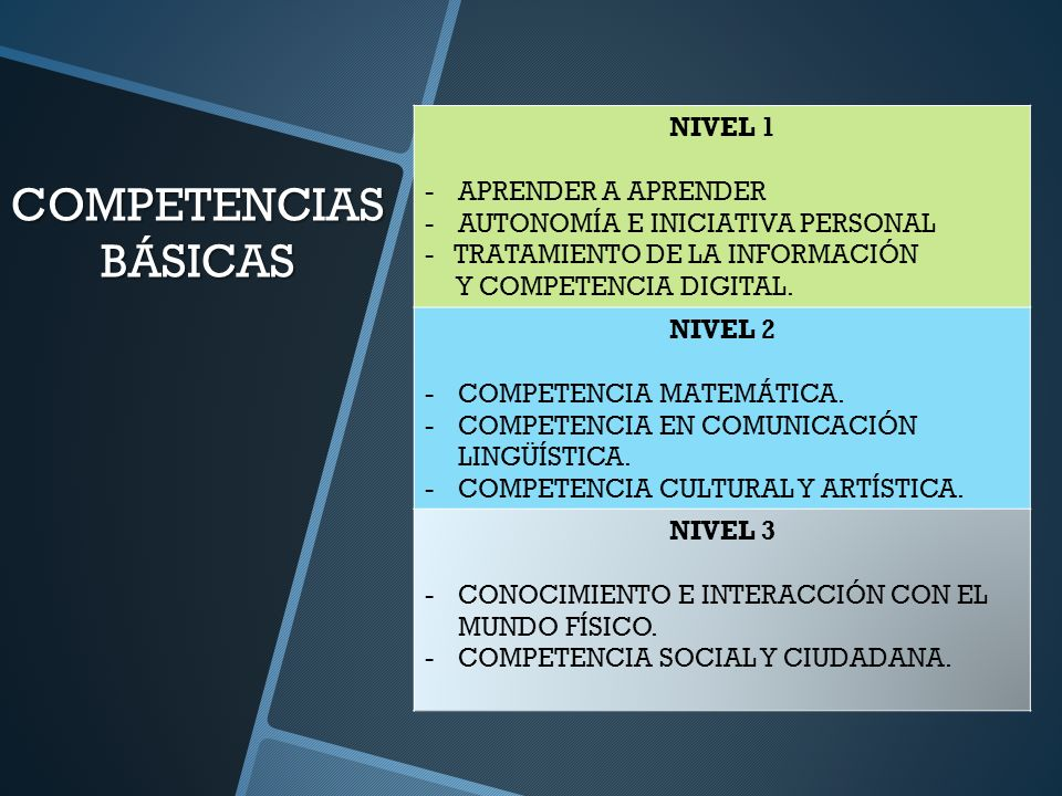 COMPETENCIAS BÁSICAS NIVEL 1 APRENDER A APRENDER
