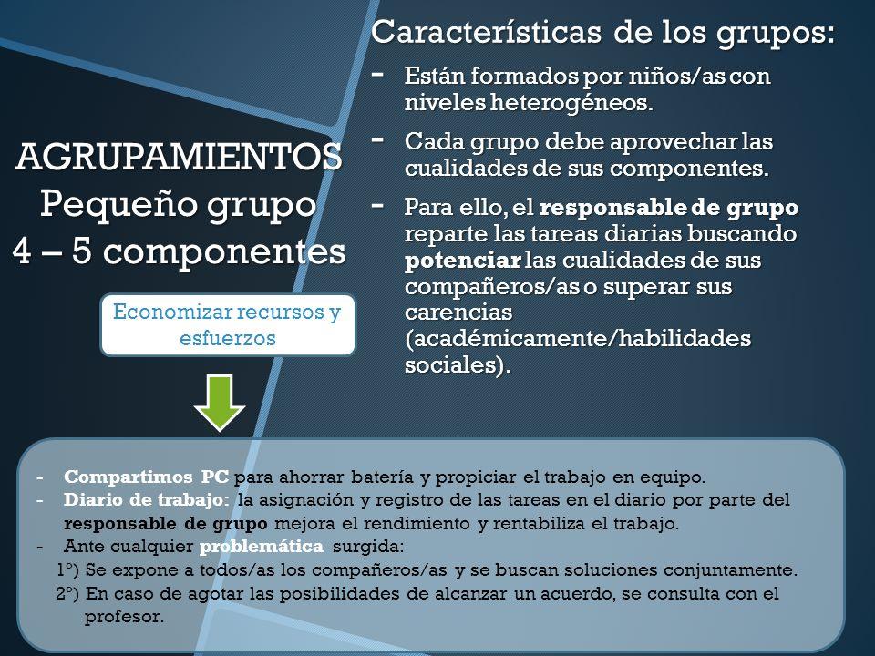 AGRUPAMIENTOS Pequeño grupo 4 – 5 componentes