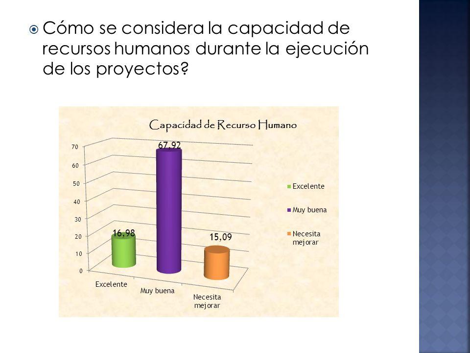 Cómo se considera la capacidad de recursos humanos durante la ejecución de los proyectos