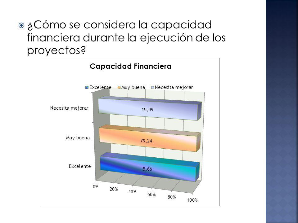 ¿Cómo se considera la capacidad financiera durante la ejecución de los proyectos