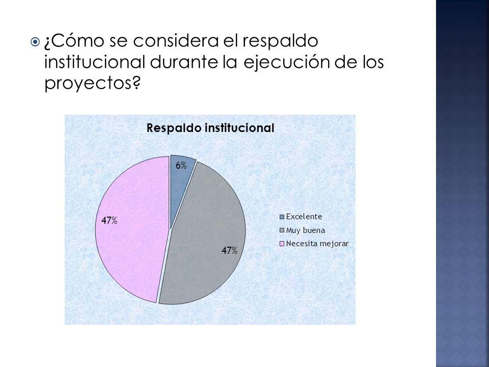 ¿Cómo se considera el respaldo institucional durante la ejecución de los proyectos