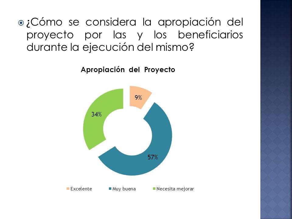 ¿Cómo se considera la apropiación del proyecto por las y los beneficiarios durante la ejecución del mismo