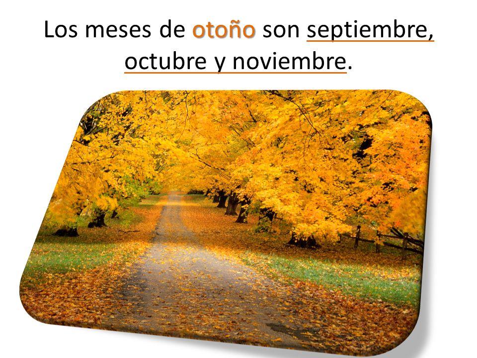 Los meses de otoño son septiembre, octubre y noviembre.